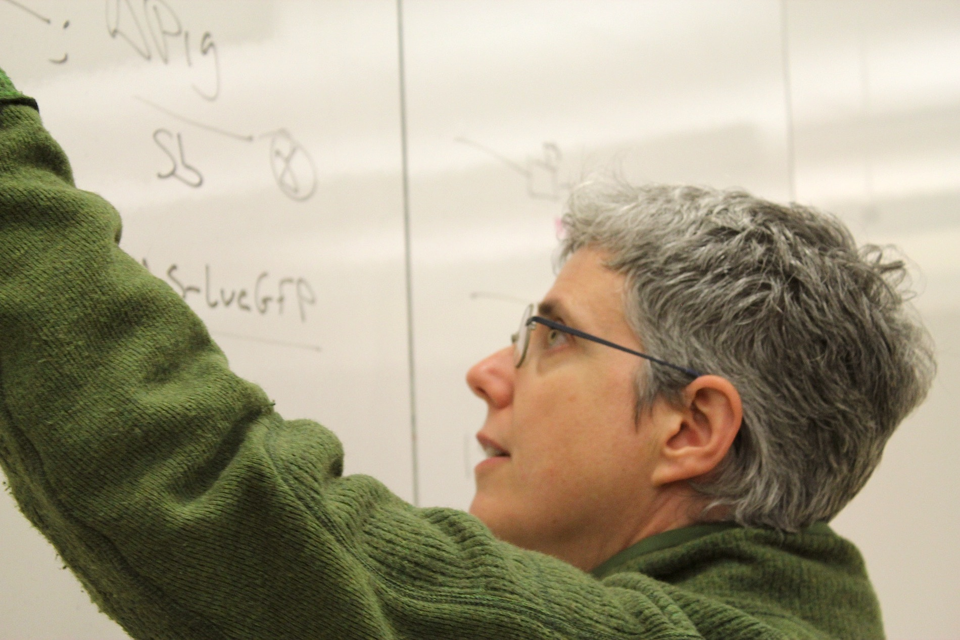 Michele-whiteboard-teaching professor