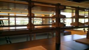 UMass Drosophila Lab
