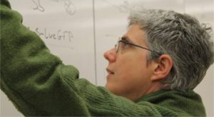 Prof Markstein teaching
